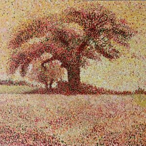 تصویر محصول تکنیک پل سینیاک